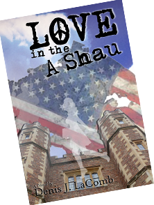 Love in the A Shau Book Cover